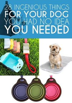 Get a leg up on #dog ownership with these clever and cool products.