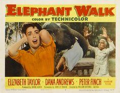 Elizabeth Taylor 1954 | Flickr - Photo Sharing!