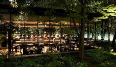 EAT アマン東京1階、大手町の自然の森に「ザ・カフェ by アマン」がオープン ギャラリー   Web Magazine OPENERS