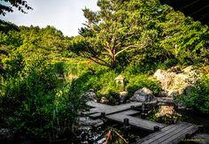 Japanischer Garten im Westpak Münchens