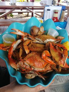 How to eat blue crabs as learned from years of experience enjoy crab meat and with a refresher course courtesy of all-you-can-eat blue crabs at Peace River Seafood in Punta Gorda Florida. Blue Crab Recipes, Carp Fishing Tips, Fishing Rods, Punta Gorda Florida, Blue Crabs, Drinking Around The World, Fish And Seafood, Seafood Dishes, Crab Meat