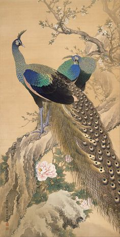 Peacocks Japan | Pair of Peacocks in Spring, 1901, Japan, by artist Imao Keinen color ...