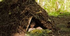 Wilderness Survival Lessons