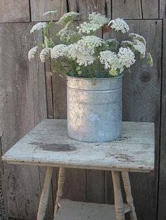 What's more lovely than a galvi of Queen Anne's Lace?