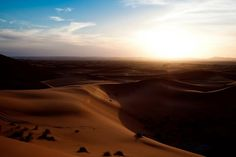 Sunset on the sand dunes, Morocco