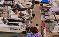 Hamilton Island, Australia European Honeymoons, Hamilton Island, Honeymoon Packages, European Vacation, Europe Destinations, Luxury Travel, Vacation Trips, Australia, Australia Beach