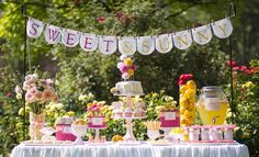 Amy Atlas  -  Sweet and Sunny Dessert Table  (this is one my the prettiest I've ever seen!)