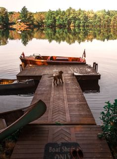 A dock on the lake to show how everyone needs their own little slice of heaven.