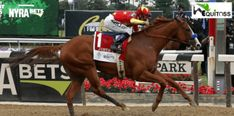Watch replay as Justify wins Belmont Stakes to capture Triple Crown Belmont Stakes Horses, The Belmont Stakes, Justify Triple Crown, New Year Offers, Preakness Stakes, Triple Crown Winners, Mike Smith, Thoroughbred Horse, Three Year Olds