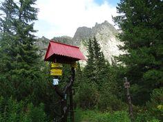 Wyprawa na Rysy, Tatry, Słowacja Hiking, Bird, Outdoor Decor, House, Home Decor, Walks, Decoration Home, Home, Room Decor