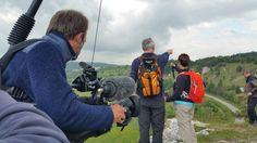 Laufen, Essen, Laufen, Essen: Genusswandern auf dem Altmühltal-Panoramaweg – Bayern-Reiseblog
