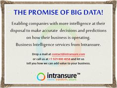 The Promise of Big Data