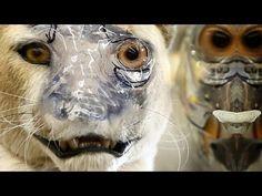 Animatronic Character Creation - Organic Mechanics - PREVIEW - FX Tutorial with Rick Lazzarini