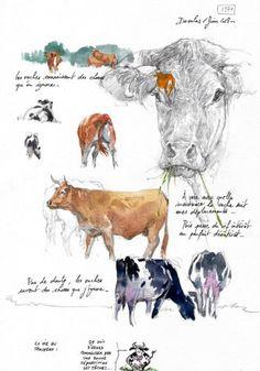 Deer Illustration, Watercolor Illustration, Watercolor Paintings, Watercolours, Watercolor Painting Techniques, Watercolor Sketchbook, Animal Drawings, Art Drawings, Contour