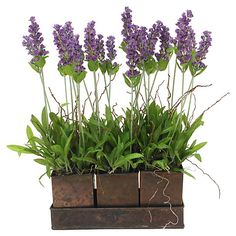 "15"" Lavender in Cubes w/ Tray, Faux"