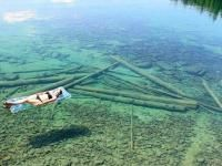Located in the great state of Montana, this crystal clear lake known by the name of Flathead is just begging to be explored.