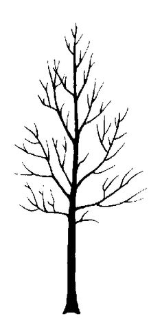sillouette of aspen trees | narrowleaf cottonwood - Trees, insects and diseases of Canada's ...