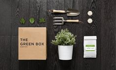The Green Box Packaging // Robertson by Manifiesto Futura Herb Garden Kit, Garden Boxes, Tiny Garden Ideas, Things Organized Neatly, Gift Subscription Boxes, Web Design, Green Box, Grow Kit, Beautiful Flower Arrangements
