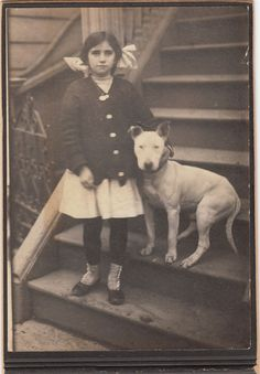 Old style, 1885 English bull terrier! They're so cute, both of them... She doesn't look all that British, but given the early date and the breed, it's gotta be in the U.K. The bully is doing a fabulous job posing. :) I wish I knew their names.