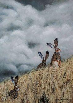 Maggie Vandewalle — Down the Rabbit Hole Rabbit Illustration, Illustration Art, Rabbit Art, Rabbit Hole, Bunny Art, Watercolor Animals, Wildlife Art, Illustrations, Beautiful Creatures