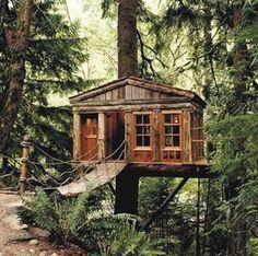 Treehouse Envy: 12 Lofty …