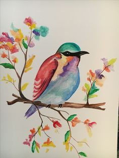 Lilac-Breasted Roller - Watercolor