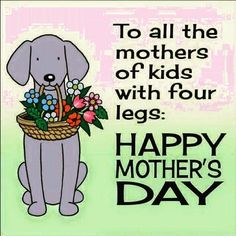 Here's to the mothers of kids with four legs, happy mother's day! #Mother #mothersday #pets #petparents