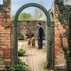 filming Gardener's World today Monty Don, Garden Pictures, Arch, Outdoor Structures, Film, World, Plants, Instagram, Movie