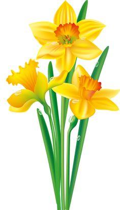 Tubes Fleurs - Le petit grenier d' Emy Flowers Nature, Exotic Flowers, Yellow Flowers, Spring Flowers, Beautiful Flowers, Flowers Garden, Flower Images, Flower Pictures, Flower Art