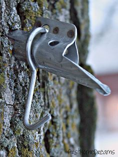 How to Tap Maple Trees for Syrup - outdoor self reliance