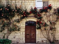 Love all the roses around the doorway.