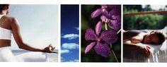 Formation Massage AMMA ASSIS et Recherche de MODELES 11-12 octobre 2013 CARCASSONNE   Le Bien-Etre au bout des Doigts