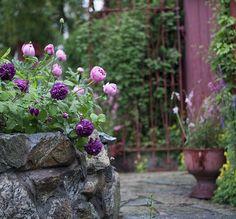 En konstnärskvinnas trädgård