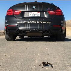 Just gained another #follower #akrapovic #m4 #m3 #bmw #bmwm4 #bmwm3 #bmwm5 #m5 #bmwsofinstagram #bmwfans #bmwrides #bmwmgram #dreambmws #fast #fastnloud #amazingcars247 #carporn #carverse #carlifestyle #cars_daily16 #carsofinstagram #carswithoutlimits #autokings #autogespot #blacklist #carbon #titanium #radicalcarclub #carsandcoffee