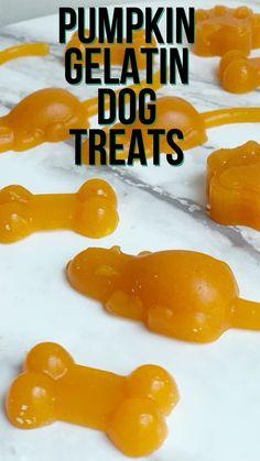 Simple Pumpkin Gummy Dog Treats - Simply Droolicious Homemade Pumpkin Puree, Canned Pumpkin, Dog Treat Recipes, Dog Food Recipes, Great Lakes Gelatin, Dog Pumpkin, Frozen Dog Treats, Beef Gelatin, Dog Diet