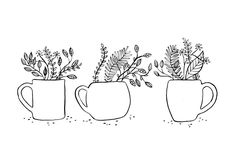 """SILVIA REGINATO ILLUSTRATIONS — """"A cup of nature""""  Buy the print here"""