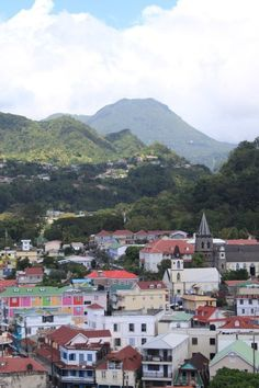 Dominica! #Dominica #Caribbean #travel #tricityliving www.tricityliving.ca