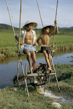 father and son irrigate rice fields by pedaling an irrigation machine, 1950s, Vietnam. Photo: National Geographic