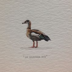 Day 323 : Shared a bottle o @barnievanstraten's delicious Beyerskloof Pinotage with @markiede tonight, and thought I'd paint the last painting in his requested series to commemorate the occasion. 22 x 22 mm. #365paintingsforants #miniature #watercolour #egyptian #goose