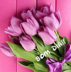 Tudo bem simples... Tudo bem leve... Assim seja o seu dia.  ________FranXimenes Sexta feira de paz e levezas pra todos!!! Beeeijo! #Bomdia!!