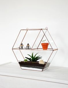 Hanging Glass Terrarium Wall Geometric Planter by NojaGlassDesign