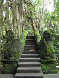 Stairs by the koi pool, Monkey Forest, Ubud, Bali, Indonesia... Check out my Bali honeymoon guide: http://holipal.com/the-best-honeymoon-in-bali/