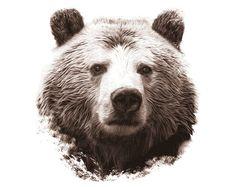 Grizzly Bear. Digital Wildlife Art for by DigitalArtDownloads