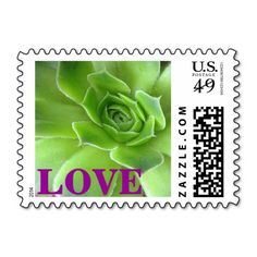 These #green and #purple #succulent #plant #love #postage #stamps brighten up any correspondence, but they're especially pretty when used to send #wedding, #bridal #shower, engagement #party, vow renewal, or anniversary #invitations, #announcements, save the dates, RSVPs, and thank you notes. Available in horizontal or vertical format, different color text, and fully customizable / personalizable (add your own names, dates, and/or phrase when ordering). #stamp #floral #foliage #postal…
