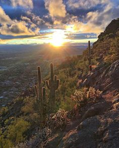 The view from Camelback Mountain, Phoenix, Arizona, USA
