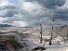 #Daydream: Yellowstone National Park