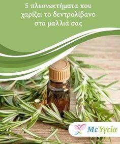 5 πλεονεκτήματα που χαρίζει το δεντρολίβανο στα μαλλιά σας Γνωρίζατε ότι εκτός από το να μειώνει τη λιπαρότητα στα μαλλιά, το δεντρολίβανο είναι επίσης πολύ αποτελεσματικό στην εξάλειψη της πιτυρίδας και στην ανάπτυξη των τριχών;