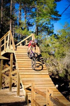 My Top Five: The Best Mountain Bike Trails in Florida