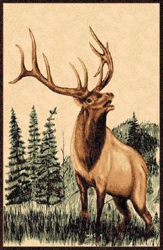 Elk Pencil Drawings is the oldest web form of great arts as well as also plays a serious role in other forms involving visual art like oil painting an. Wood Burning Patterns, Wood Burning Art, Animal Sketches, Animal Drawings, Elk Drawing, Rabbit Drawing, Elk Pictures, Mountain Drawing, Bull Elk