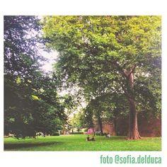 """""""Giardini Reali"""". #Torino vista dai cittadini per #inTO. foto di sofia.delduca #summer #park #trees #gardens #nature #sun #relax"""